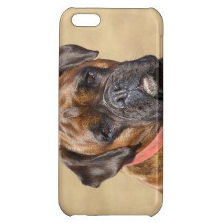 Brindle Boxer Dog Case For iPhone 5C