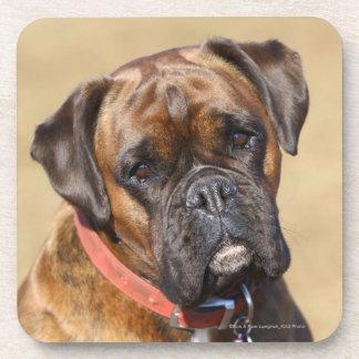 Brindle Boxer Dog Drink Coaster