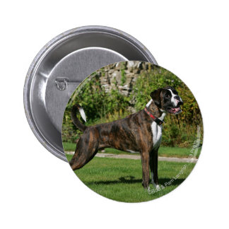 Brindle Boxer Dog Show Stance 6 Cm Round Badge