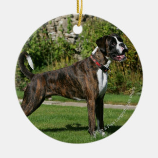 Brindle Boxer Dog Show Stance Christmas Ornament
