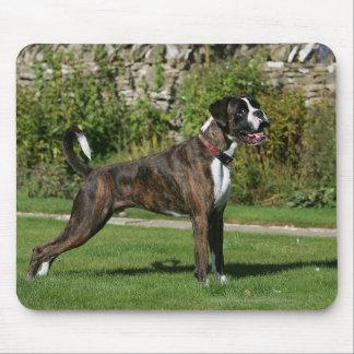 Brindle Boxer Dog Show Stance Mouse Mat