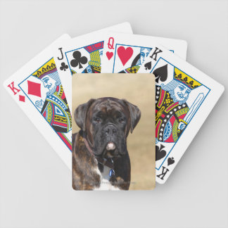 Brindle Boxer Dog Standing Bicycle Playing Cards