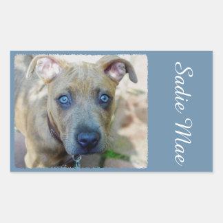 Brindle Pit Bull Puppy Rectangular Sticker