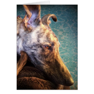 Brindled Lurcher Sighthound Long Dog Greyhounds Card