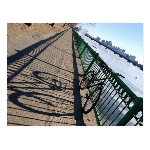 Brisk Shadows Postcards