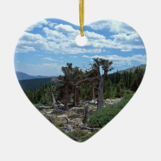 Bristlecone Pine Tree Christmas Ornament