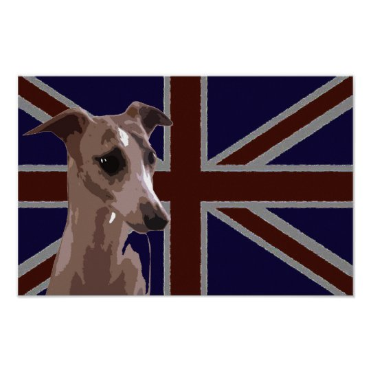 Britannia series: Buddy the Whippet Poster