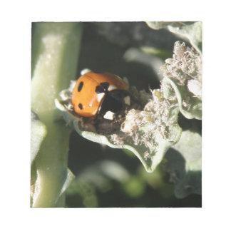 British 7 Spot Ladybug Notepad