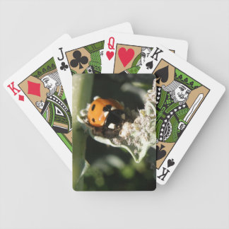British 7 Spot Ladybug Playing Cards