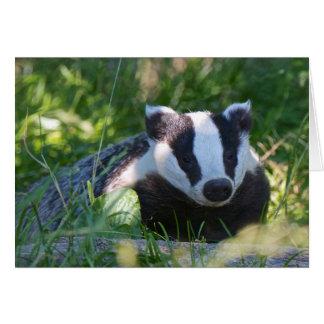 British Badger Card