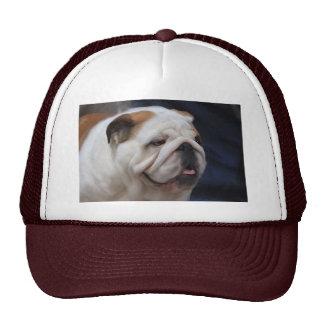 British Bulldog Hats