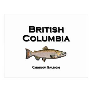 British Columbia - BC Chinook Salmon Postcard