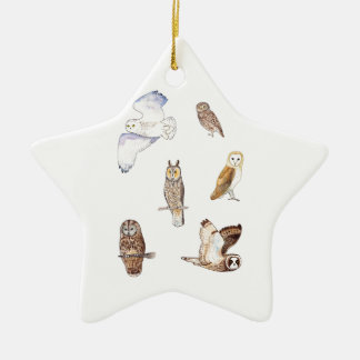 British owl species christmas ornament