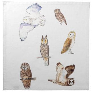 British owl species napkin
