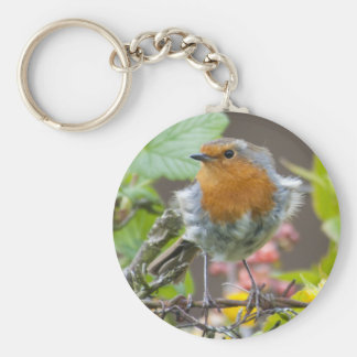 British Robin in Spring keychain