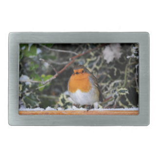 British robin redbreast belt buckles