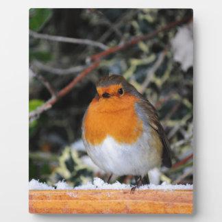 British robin redbreast display plaques