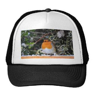 British robin redbreast mesh hat