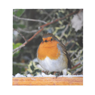 British robin redbreast notepad