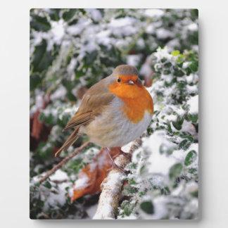 British robin redbreast plaque