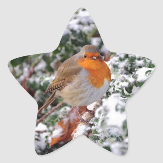 British robin redbreast star sticker