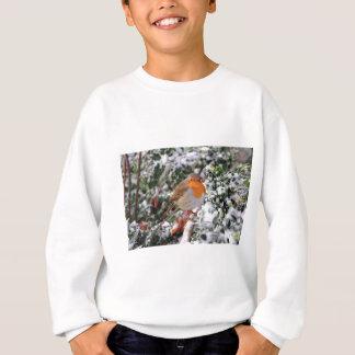 British robin redbreast sweatshirt