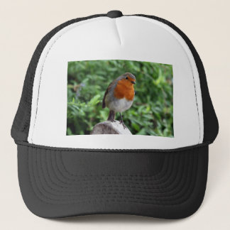 British Robin Trucker Hat