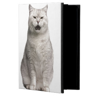 British Shorthair (4 years old) iPad Air Cover