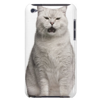 British Shorthair (4 years old) iPod Touch Case