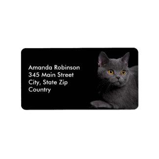 British Shorthair Cat Address Label