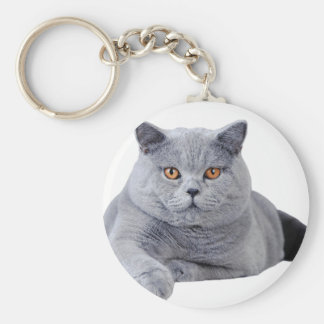British shorthair cat basic round button key ring