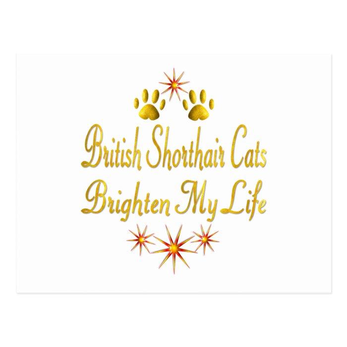 British Shorthair Cats Brighten My Life Postcard