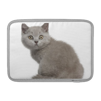 British Shorthair Kitten (10 weeks old) Sleeves For MacBook Air