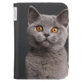 British Shorthair kitten (3 months old) Kindle Cases