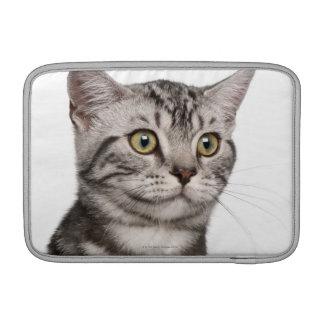 British Shorthair kitten (4 months old) Sleeve For MacBook Air