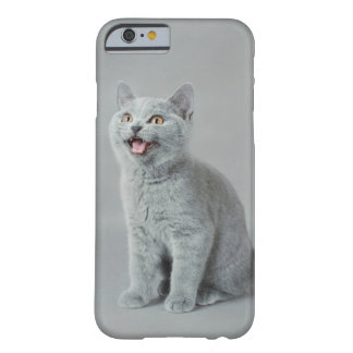 British shorthair kitten barely there iPhone 6 case