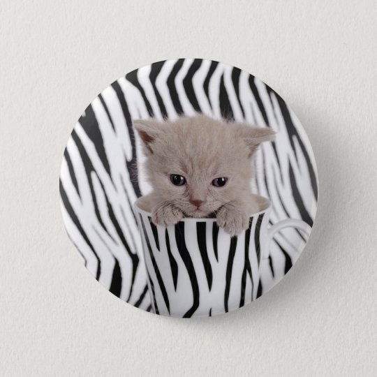 British shorthair kitten in mug 6 cm round badge