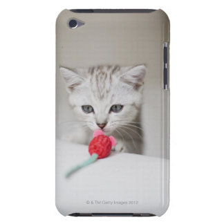 British shorthair kitten smelling toy mouse barely there iPod case