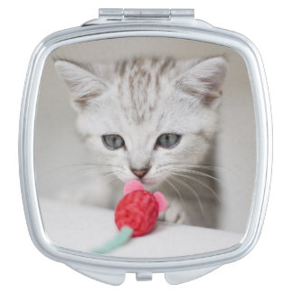 British shorthair kitten smelling toy mouse compact mirrors