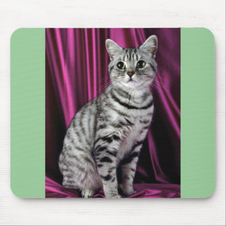 British Shorthair, silver spotted Mouse Mat