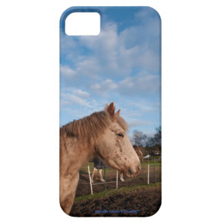 British spotted pony iPhone 5 cover