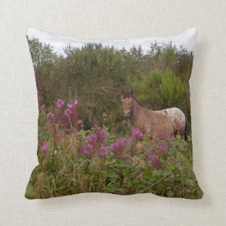 British spotted pony pillow