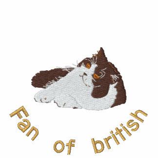 british to longhair chocolate and white