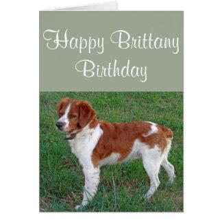 Brittany Birthday Greeting Card