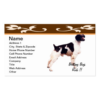 Brittany Boys Rock !! Pack Of Standard Business Cards