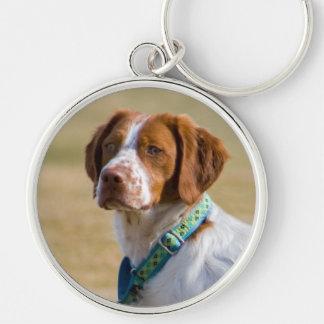 Brittany dog beautiful photo round keychain