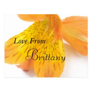 Brittany Postcard