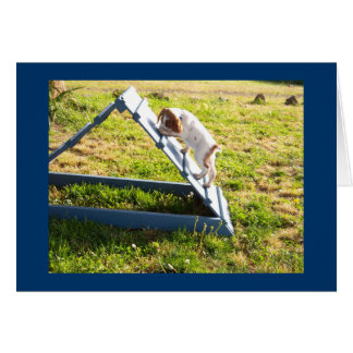 Brittany puppy Agility Stationery Note Card