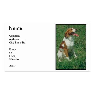 Brittany Spaniel Business Card