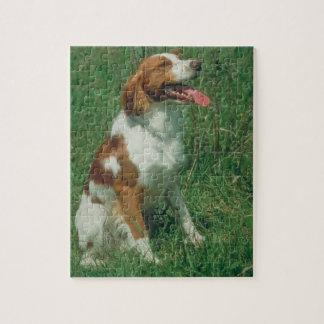 Brittany Spaniel Dog Puzzle